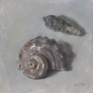 26_seashells.jpg